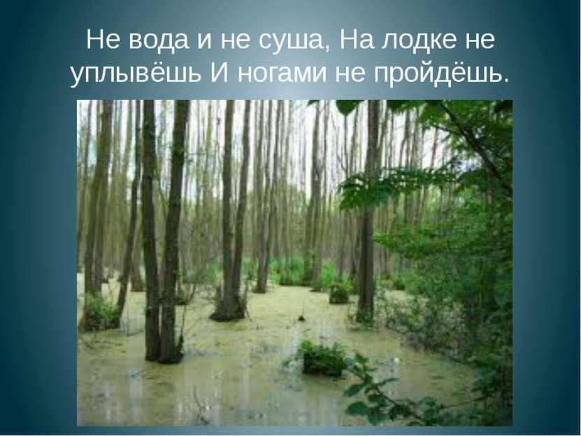 Не вода и не суша, На лодке не уплывёшь И ногами не пройдёшь.