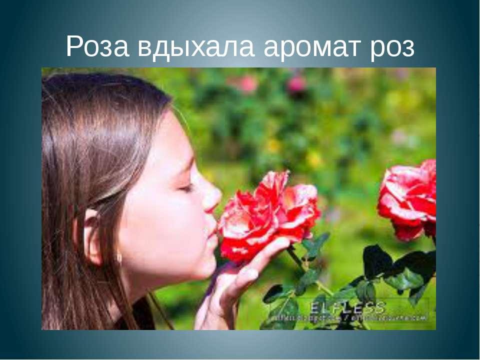 Роза вдыхала аромат роз