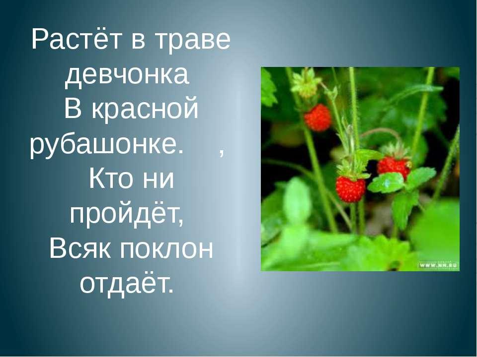 Растёт в траве девчонка В красной рубашонке. , Кто ни пройдёт, Всяк поклон от...
