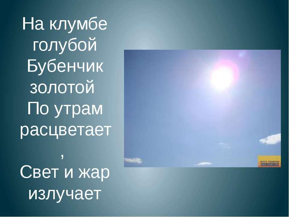 На клумбе голубой Бубенчик золотой По утрам расцветает, Свет и жар излучает