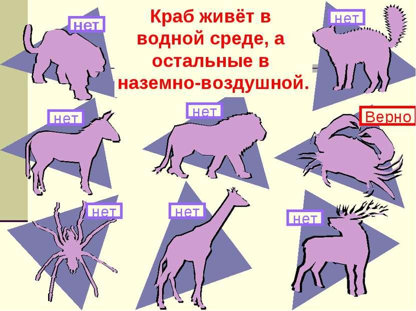 Здесь изображены животные. Какое из них живёт в другой среде обитания? нет Кр...