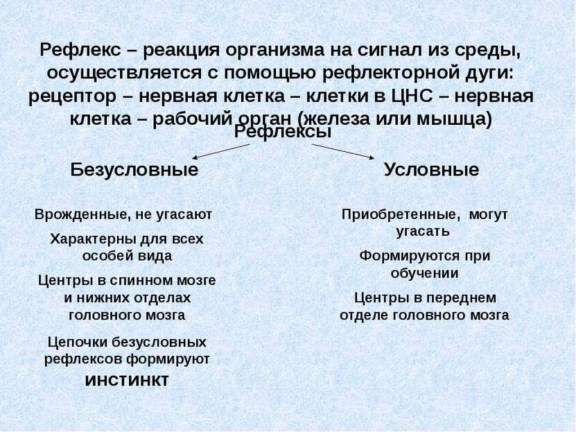 Рефлекс – реакция организма на сигнал из среды, осуществляется с помощью рефл...