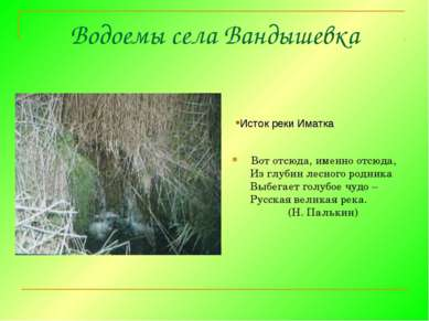 Водоемы села Вандышевка Вот отсюда, именно отсюда, Из глубин лесного родника ...