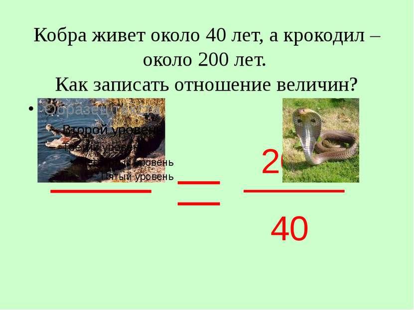 Кобра живет около 40 лет, а крокодил – около 200 лет. Как записать отношение ...