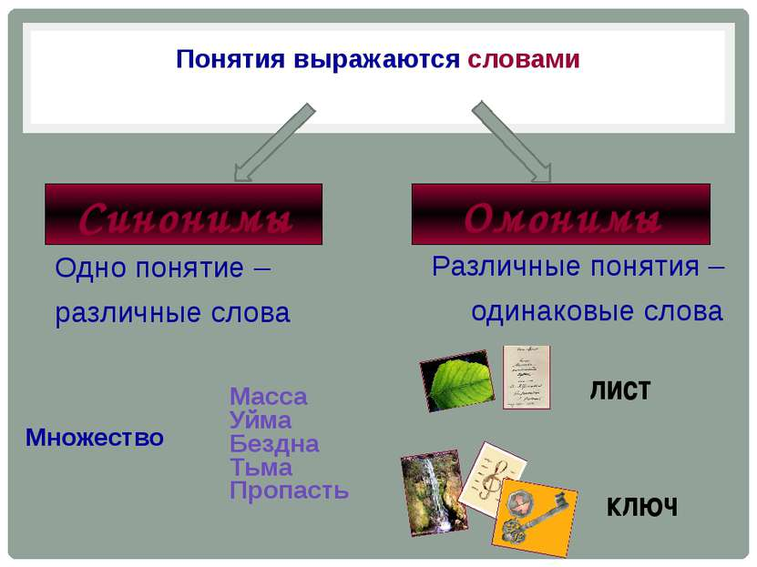 Понятия выражаются словами Синонимы Омонимы Одно понятие – различные слова Ра...