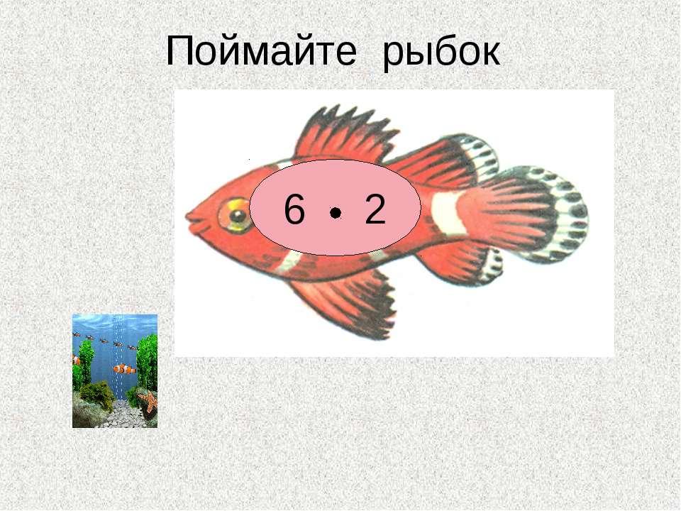 Поймайте рыбок 6 2 5 2 10 2 2 7 8 2