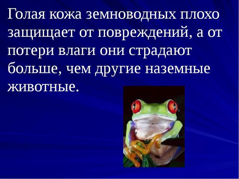 Голая кожа земноводных плохо защищает от повреждений, а от потери влаги они с...
