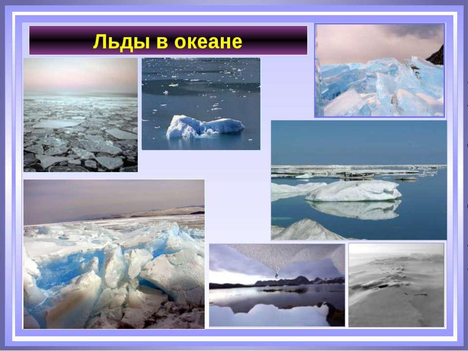 Льды в океане