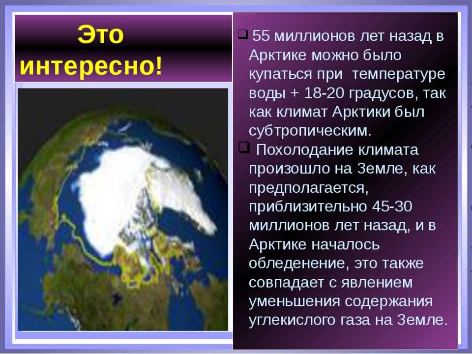 55 миллионов лет назад в Арктике можно было купаться при температуре воды + 1...