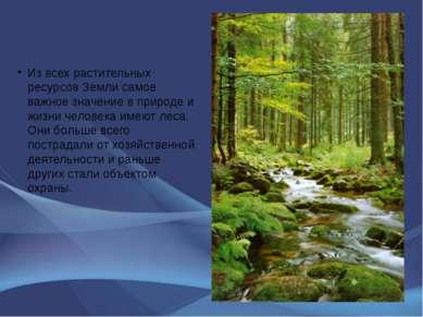 Из всех растительных ресурсов Земли самое важное значение в природе и жизни ч...