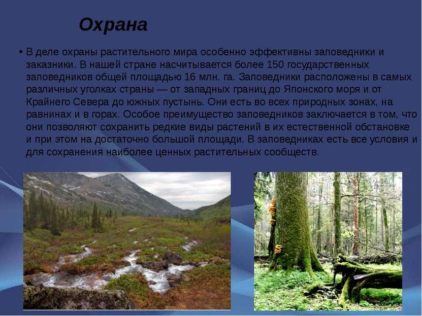 Охрана В деле охраны растительного мира особенно эффективны заповедники и зак...