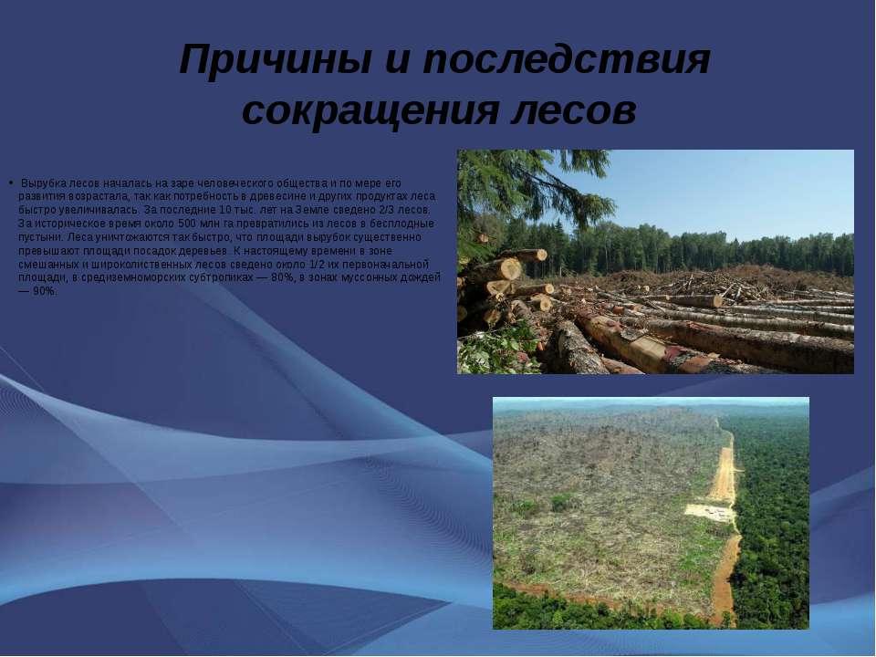 Причины и последствия сокращения лесов Вырубка лесов началась на заре человеч...