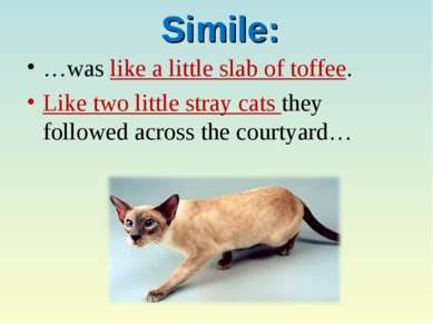 Simile: …was like a little slab of toffee. Like two little stray cats they fo...