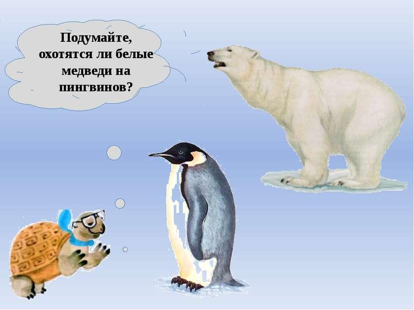 Подумайте, охотятся ли белые медведи на пингвинов?