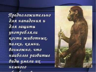 Предположительно для нападения и для защиты употребляли кости животных, палки...
