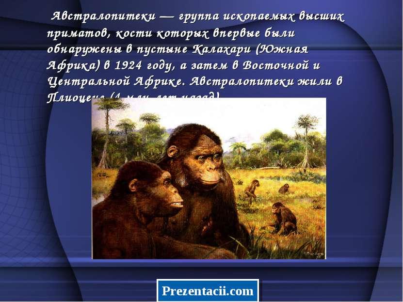 Австралопитеки — группа ископаемых высших приматов, кости которых впервые был...