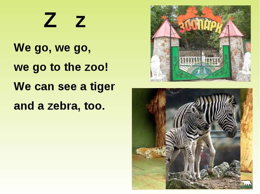 Z z We go, we go, we go to the zoo! We can see a tiger and a zebra, too.