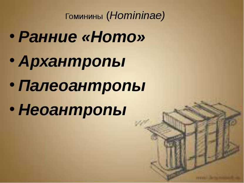 Гоминины (Homininae) Ранние «Homo» Архантропы Палеоантропы Неоантропы