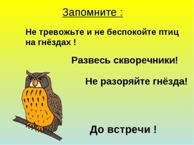 Запомните : Не тревожьте и не беспокойте птиц на гнёздах ! Развесь скворечник...