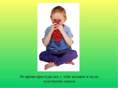 Во время простуды нос у тебя заложен и ты не чувствуешь запахи