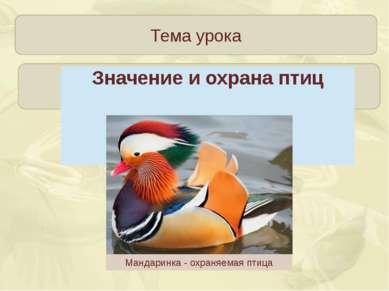 Тема урока Мандаринка - охраняемая птица Зорина Наталья Николаевна Значение и...