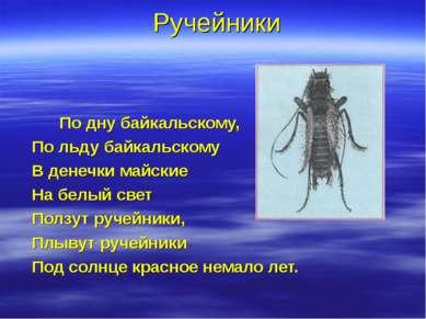 Ручейники По дну байкальскому, По льду байкальскому В денечки майские На белы...