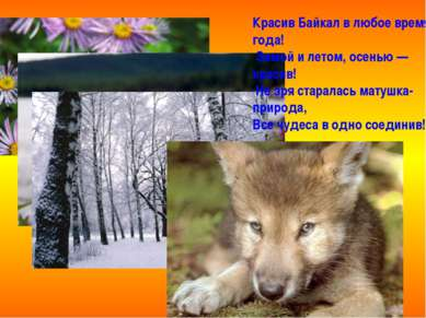 Красив Байкал в любое время года! Зимой и летом, осенью — красив! Не зря стар...