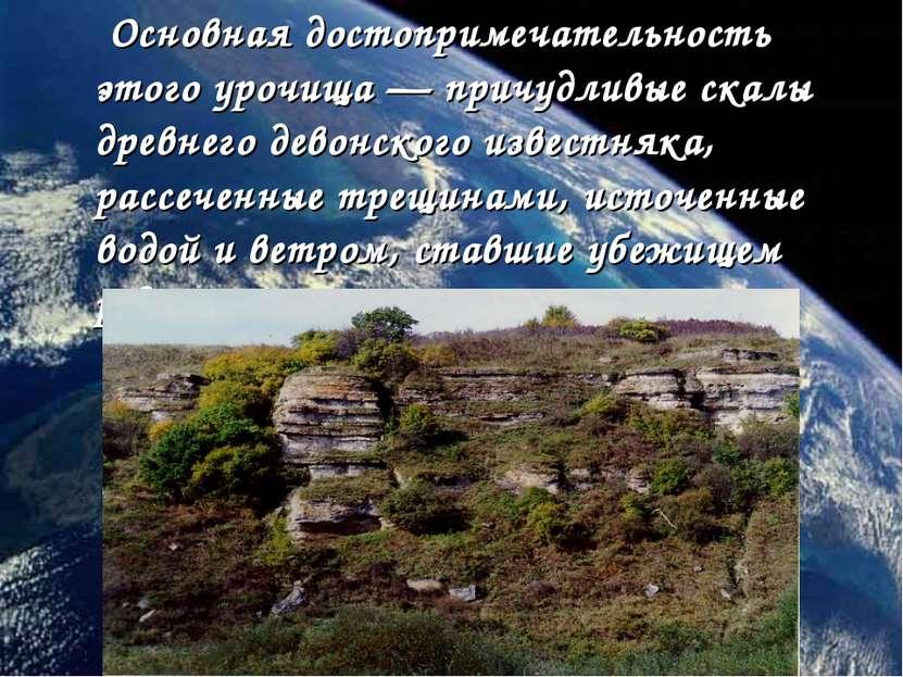 Основная достопримечательность этого урочища—причудливые скалы древнего дев...