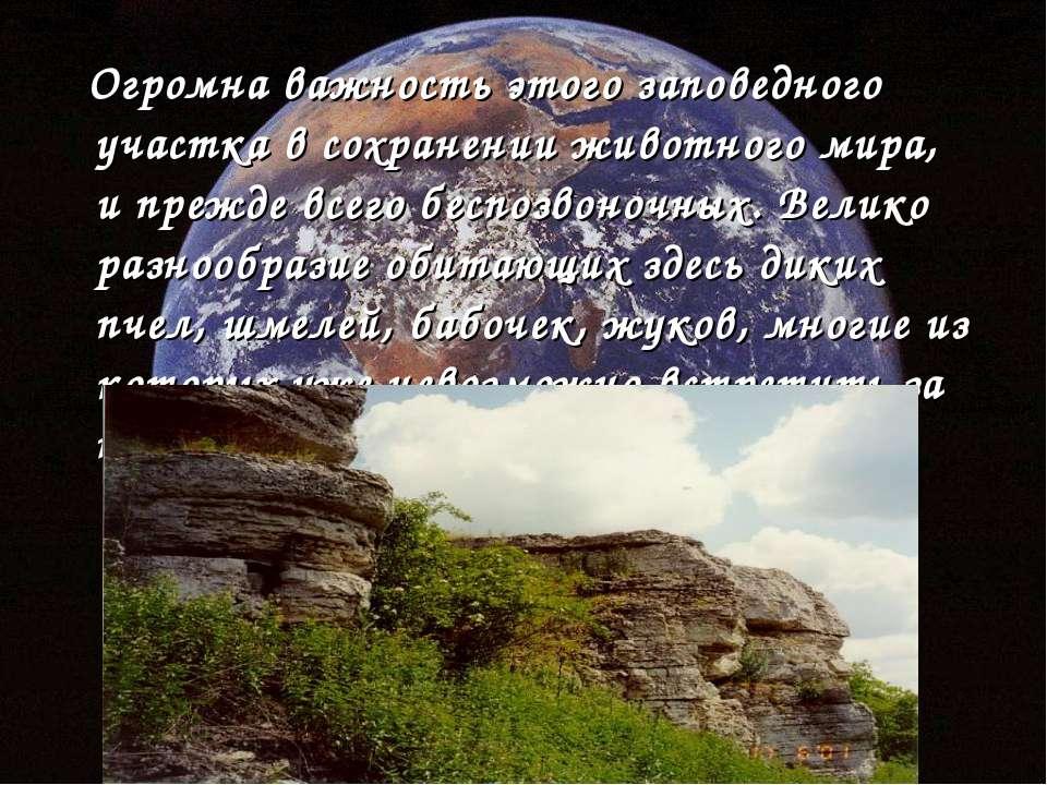 Огромна важность этого заповедного участка в сохранении животного мира, и пре...