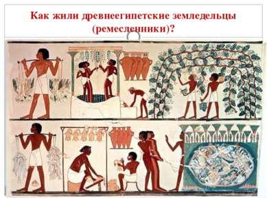 Как жили древнеегипетские земледельцы (ремесленники)?