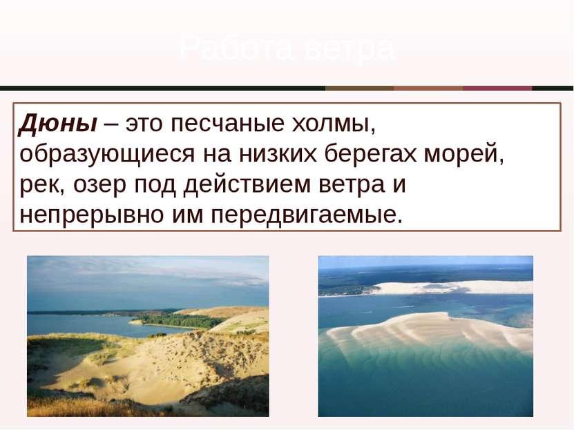 Работа ветра Дюны – это песчаные холмы, образующиеся на низких берегах морей,...