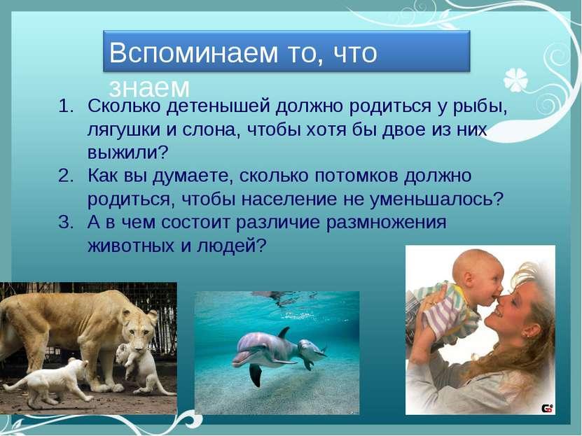 Сколько детенышей должно родиться у рыбы, лягушки и слона, чтобы хотя бы двое...