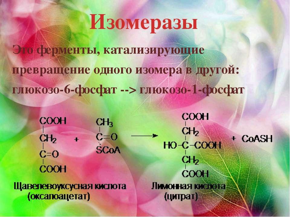 Изомеразы Это ферменты, катализирующие превращение одного изомера в другой: г...