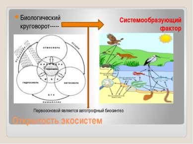 Открытость экосистем Биологический круговорот----- Системообразующий фактор П...