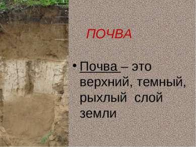 ПОЧВА Почва – это верхний, темный, рыхлый слой земли