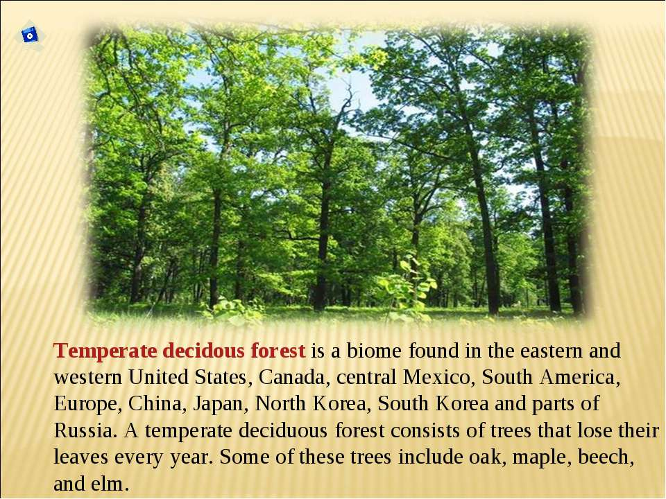 Temperate decidous forest is a biome found in the eastern and western United ...