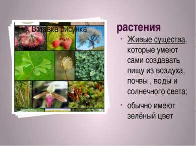 растения Живые существа, которые умеют сами создавать пищу из воздуха, почвы ...