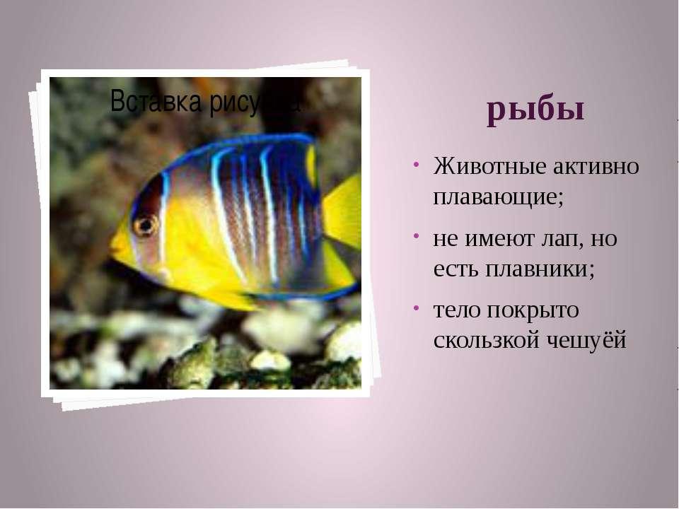 рыбы Животные активно плавающие; не имеют лап, но есть плавники; тело покрыто...