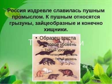 Россия издревле славилась пушным промыслом. К пушным относятся грызуны, зайце...