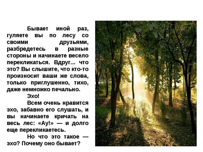 Бывает иной раз, гуляете вы по лесу со своими друзьями, разбредетесь в разные...