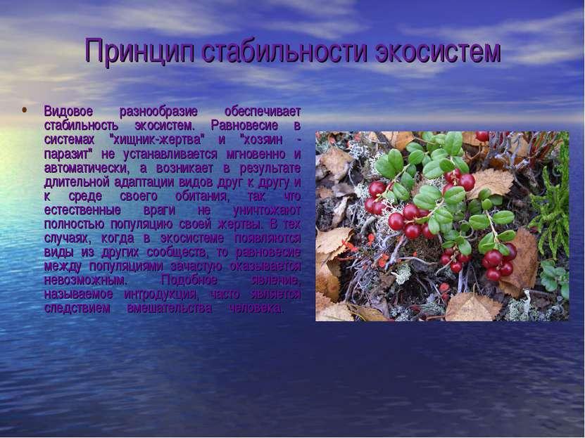 Принцип стабильности экосистем Видовое разнообразие обеспечивает стабильность...