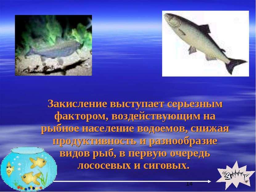 Закисление выступает серьезным фактором, воздействующим на рыбное население в...