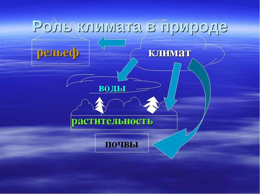 почвы рельеф климат воды растительность Роль климата в природе