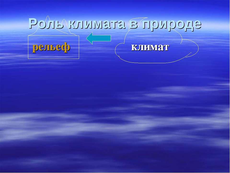рельеф климат Роль климата в природе