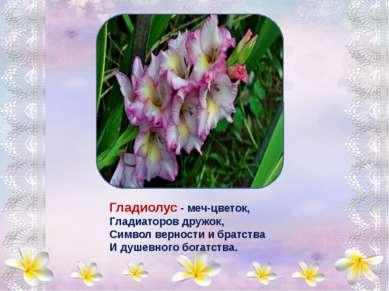 В нежный бархат все цветы Солнышком одеты, Капли утренней росы Словно самоцве...