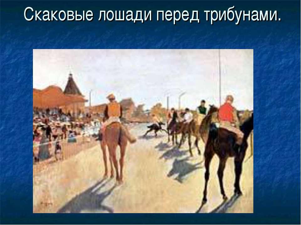 Скаковые лошади перед трибунами.