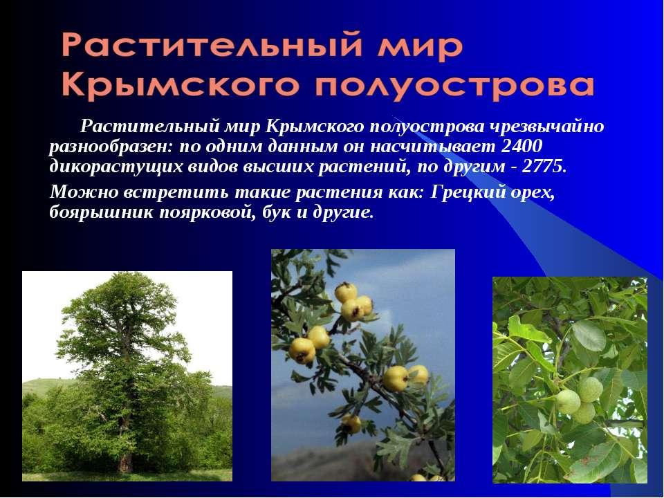 Растительный мир Крымского полуостровачрезвычайно разнообразен: по одним дан...