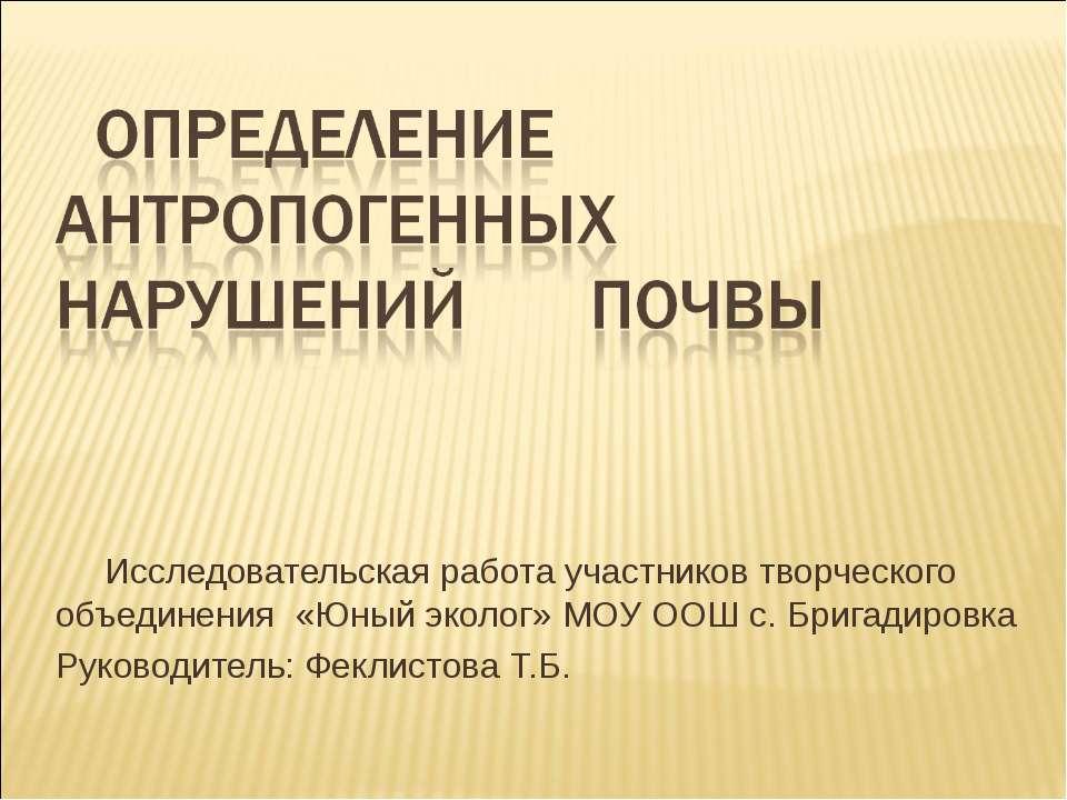 Исследовательская работа участников творческого объединения «Юный эколог» МОУ...
