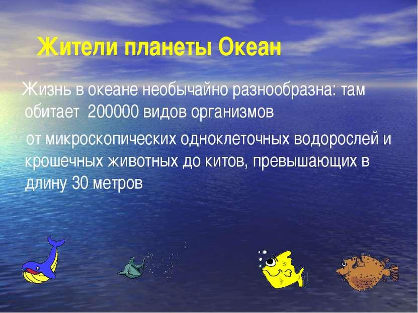 Жители планеты Океан Жизнь в океане необычайно разнообразна: там обитает 2000...