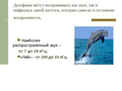 Дельфины могут воспринимать как звук, так и инфразвук такой частоты, которые ...